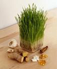 Remedii, retete si tratamente pe baza de produse naturiste Calivita